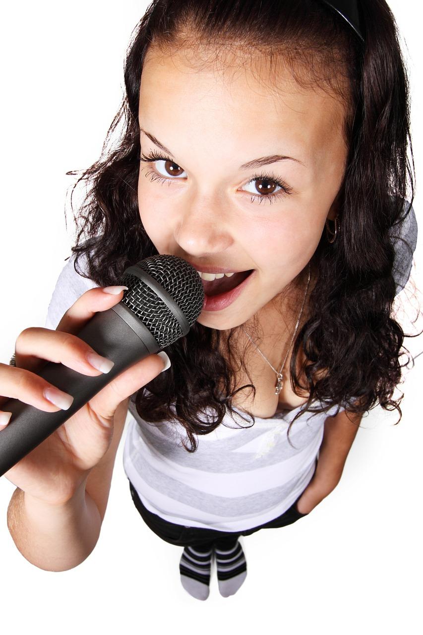 Decoracion De Un Karaoke ~ Karaoke en casa  Un divertid?simo plan para una fiesta improvisadaWe